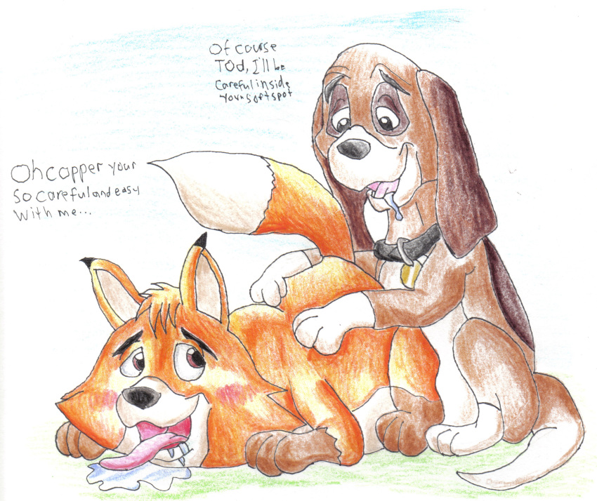chief the hound fox and the Princess cadence having a baby